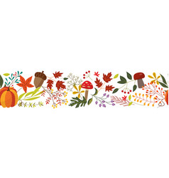 autumn horizontal banner with fall colorful plants vector image