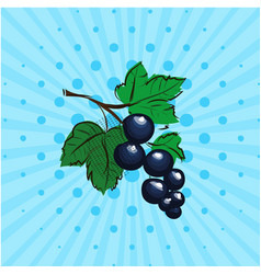 black currant on a blue background lines dots vector image