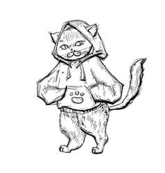 Cat dressed in hoodie vintage monochrome vector