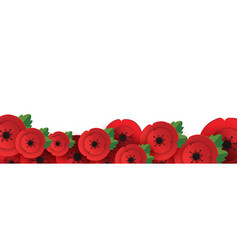 Remembrance anzac day web header poppies flowers vector