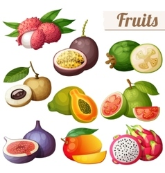 Set of cartoon food icons Exotic fruits isolated vector