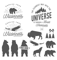 set wilderness design elements vector image