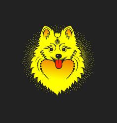 image of a yellow dog pomeranian dog head vector image