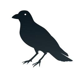 a crow symbol vector image