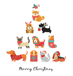 Collection christmas cats and dogs merry vector