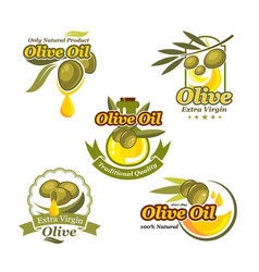 olive oil icons product label template set vector image