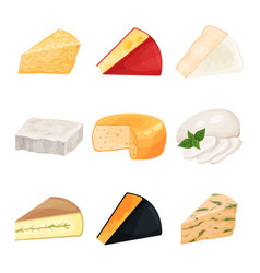 Set of various cheese dairy products cartoon vector