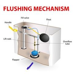 flushing mechanism Flush toilet vector image