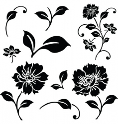 Vector daisy and floral ornaments vector