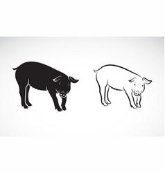 pig on white background farm animals vector image