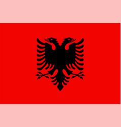 closeup flag albania vector image