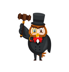 cute auction owl cartoon character vector image
