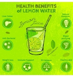 Handdrawn lemon infographic vector