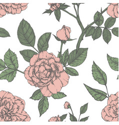 seamless pattern with roses vintage design vector image