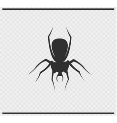 Spider icon black color on transparent vector