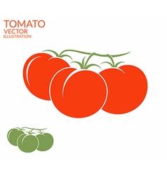 Tomato Branch vector image