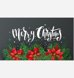 christmas design with poinsettia and fir branches vector image