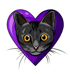 black cartoon cat biting a huge heart vector image