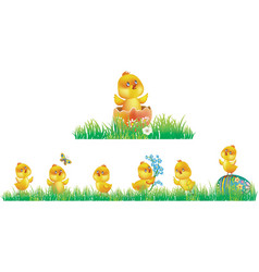 chicken in grass vector image