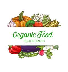 Organic vegetarian food farm vegetables vector