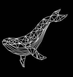 Polygonal white whale vector