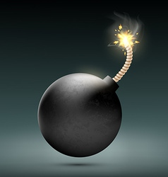 round bomb with a burning wick vector image