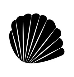 Sea shell isolated icon vector