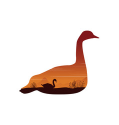 swan silhouette on a white background with sunset vector image