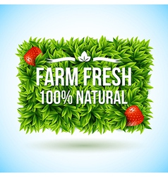 Farm fresh label made of leaves vector image vector image