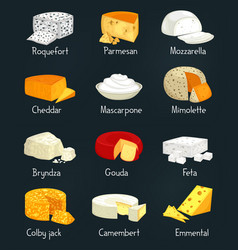 Cheese pieces of parmesan and mozzarella food vector