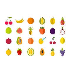 fruits icon set flat style vector image