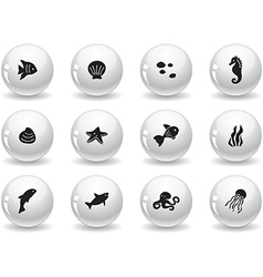 Web buttons ocean life icons vector image vector image