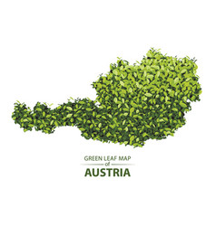 Green leaf map of austria of a vector