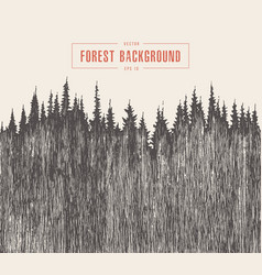 pine forest background drawn sketch vector image