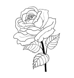 rose cartoon style on white background vector image
