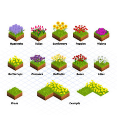 Set of Isometric Flowers vector
