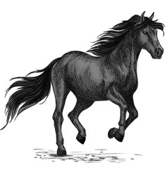 Sketched stallion gallop or horse abling vector