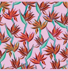 With flowers strelitzia vector