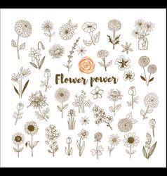 set of vintage doodle sketch flowers on white vector image vector image