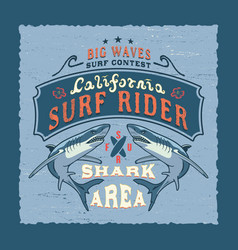 Big waves california vector