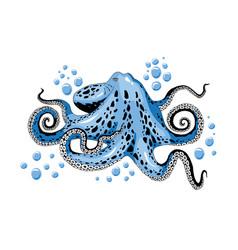 Cartoon skye blue octopus clip-art isolated on vector