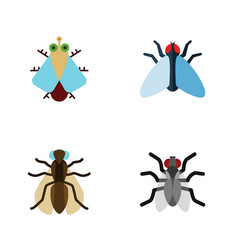 Flat icon housefly set of tiny housefly gnat and vector