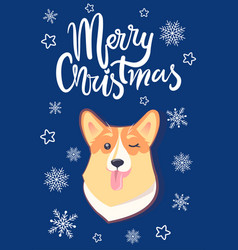 merry christmas doggy face vector image