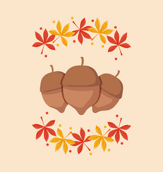 Nuts for thanksgiving day with leafs vector