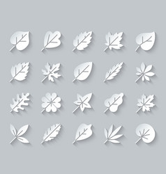 Organic leaf simple paper cut icons set vector