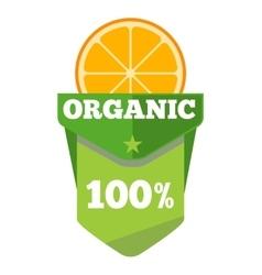 Organic natural fruit juice label template vector image