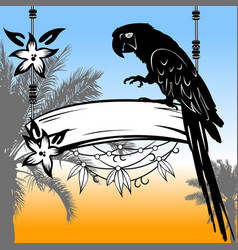 palms parrot and sunset vector image