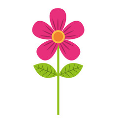 Pink flower leave decoration natural icon vector