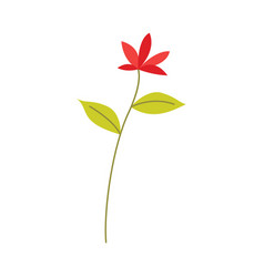 red flower on stem with green leaves - natural vector image