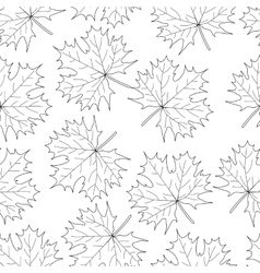 Seamless loop maple leaf on a white background vector